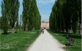 Parco Ducale - foto 1