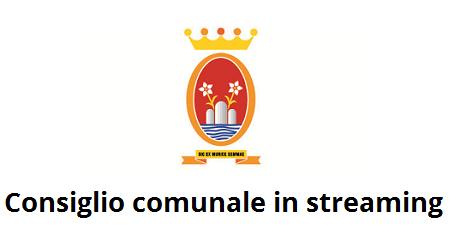 Consiglio Comunale in streaming